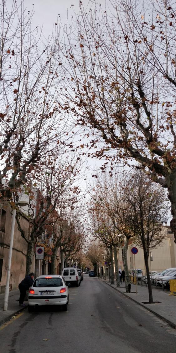 Photo Of An Empty Street in Spain