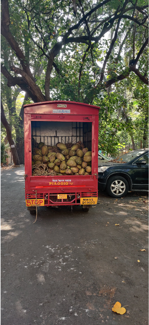 Photo of a wood truck in India